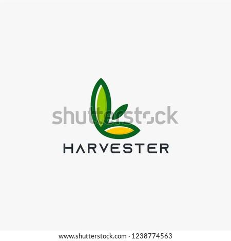Harvest leaf logo design vector