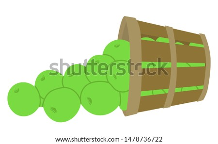 Harvesting season vector, isolated bunch of apples, lush organic production. Healthy organic food picked in garden, clos up of fruits from farm flat style. Picking apple concept. Flat cartoon