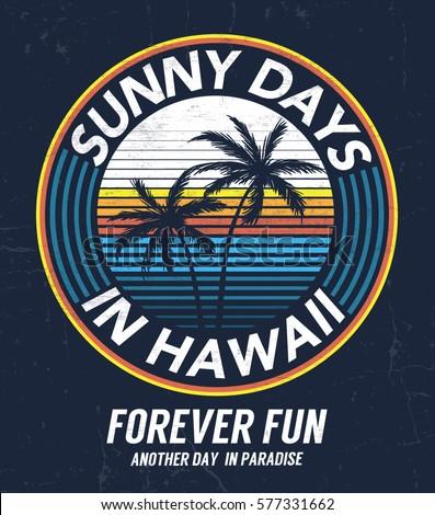 hawaii vector illustration for...