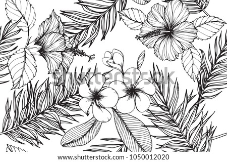 Free Hawaiian Hibiscus Background Vector Download Free Vector Art