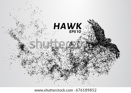 Shutterstock Hawk of the particles. The silhouette of a hawk consists of small circles