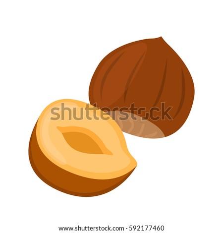 hazelnut in flat cartoon style