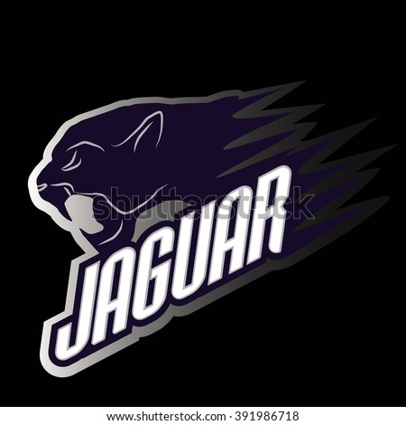 head jaguar professional logo