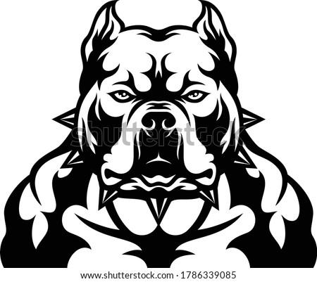 Head of Aggressive American Bully Dog Foto stock ©