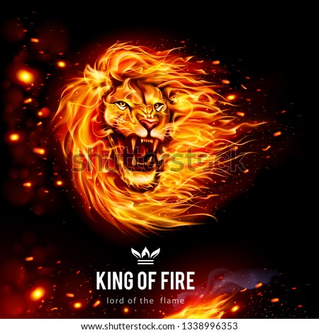 head of aggressive lion in