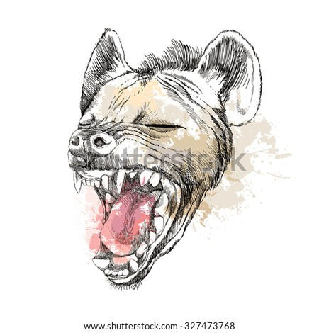 Head of laughing hyena on the blots background