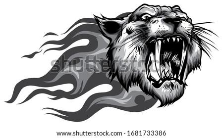 head of roaring tiger in