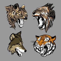 Heads of predator animals.vector illustration