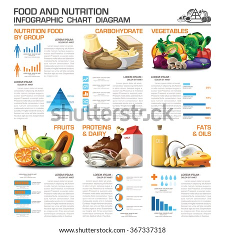 Shutterstock Health And Nutrition Food By Group Infographic Chart Diagram Vector Design Template