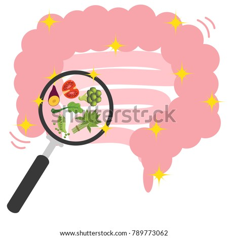 Health intestine cute and funny, smiling healthy bowel, intestine character Before and After , cartoon vector illustration isolated on white background.