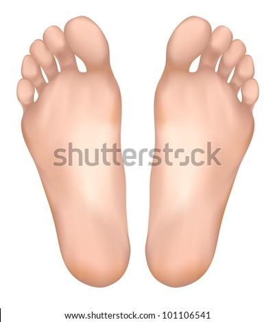 Healthy feet. Vector illustration. - stock vector