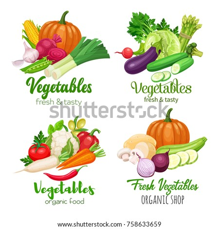 Healthy food banners with vector vegetables. Cabbage, pepper, beets, or carrots. Onion, zucchini, eggplant and asparagus. Corn, celery and mushrooms. #758633659