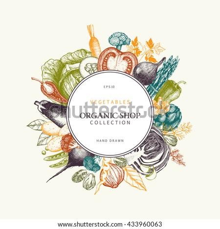 Healthy food design with hand drawn vegetables and spices sketch. Colorful menu template with organic food illustration.