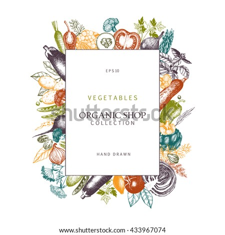 Healthy food design with hand drawn vegetables and spices sketch. Organic Food frame isolated on white. Colorful menu template.