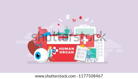 Healthy Human Organ Donor Transplantation Tiny People Character Concept Vector Illustration, Suitable For Wallpaper, Banner, Background, Card, Book Illustration, And Web Landing Page