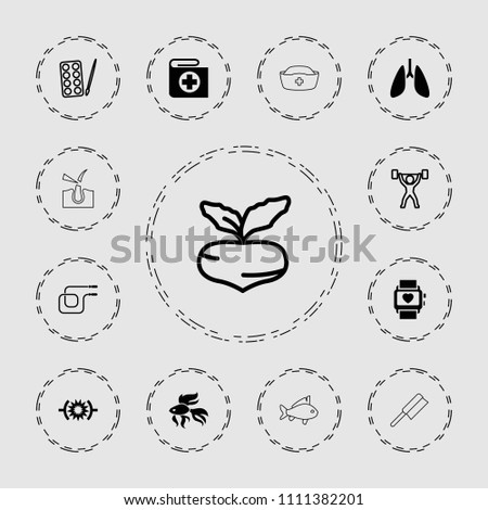 Healthy icon. collection of 13 healthy filled and outline icons such as beet, paints, pressure, power lifter, fish, jump rope. editable healthy icons for web and mobile.