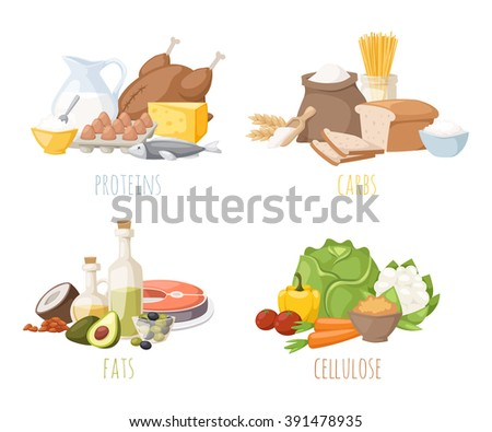 healthy nutrition  proteins