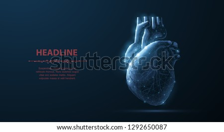 Heart. Abstract 3d vector human heart isolated on blue. Anatomy, cardiology medicine, organ health, medical science, life healthcare, cardio illness concept illustration or background