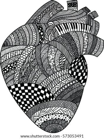 Heart anatomical - doddle art technique,  valentine's day