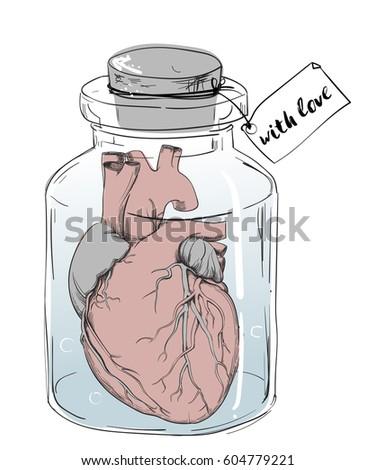 heart   funny anatomy joke