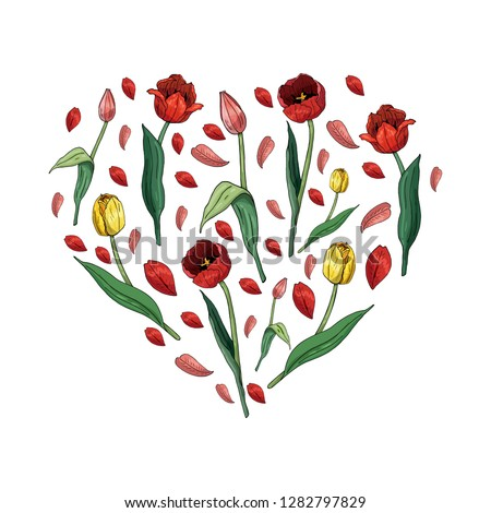 heart made of tulips and tulip