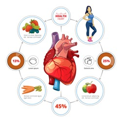 Heart medical vector infographics. Organ and nutrition for healthcare, vegetable and vitamin, fruit illustration