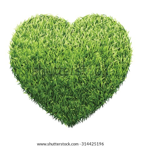 heart of green grass a lawn