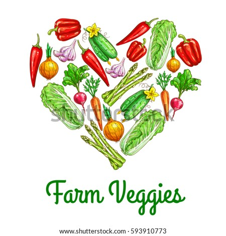 Heart of vegetables poster. Carrot, chilli and bell pepper, onion, chinese cabbage, radish, cucumber, garlic and asparagus sketches. Fresh organic farm veggies for healthy food, agriculture design #593910773