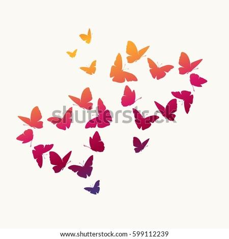 hearts of butterflies valentine'
