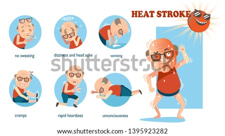 Heat stroke signs and symptoms. info graphics of risk in a circle. cartoon vector illustration Isolated on white background.