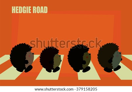 hedgie roadfour cute hedgehogs