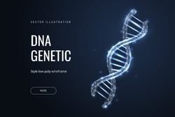 Helix or DNA. Low poly wireframe style. Banner concept for biotech, science, medicine. Technology and innovation in genetic engineering. Polygonal abstract isolated on blue background. Vector