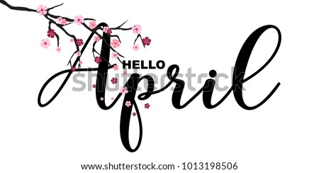 Hello April, spring related motivational quote, isolated on white background, vector illustration. Handwritten letters, Japanese sakura branch, little cute flowers falling.