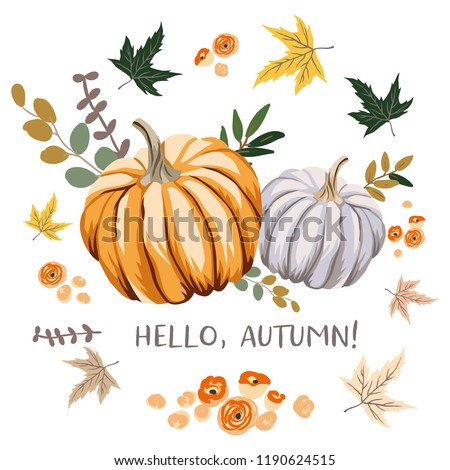 Hello Autumn design template print with orange, gray pumpkins, maple leaves. Vector Halloween illustration. October harvest background. Organic vegetable garden food. Nature design. Fall season
