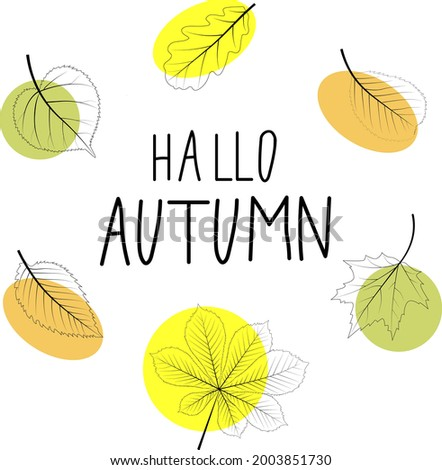 Hello autumn. Poster, greeting card with Autumn leaves set, isolated on white background. Simple cartoon flat style. Isolated vector illustration.  Stock fotó ©