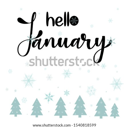 Hello January month with snow covered trees . winter decoration . Illustration month January