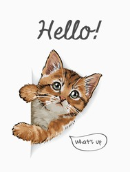hello slogan with cute cat coming out of paper illustration