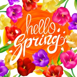 Hello spring colotful tulips flowers white background with lettering. Template for greeting post card, a circle orange sun. Vector illustration EPS10. art