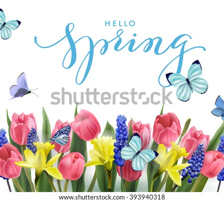 Hello, spring. Spring Concept. Spring background with Blooming spring flowers, pink tulips, Narcissus and butterflies. Template Vector. #393940318