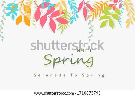 hello spring typography
