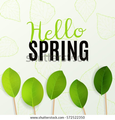 Hello Spring. Vector illustration with green leaves