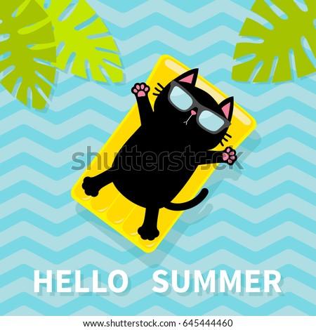 hello summer black cat