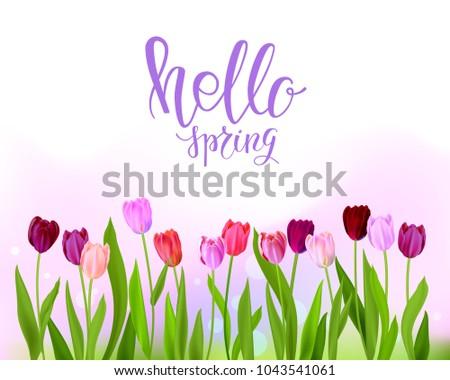 hello tulip spring banner