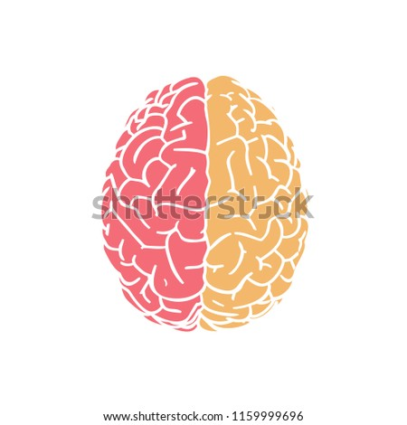 Hemispheres brain in top view flat icon drawing illustration isolated on white background