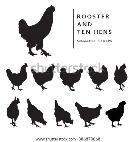 Hen And Rooster. Black and white image. Set of Isolated silhouettes.