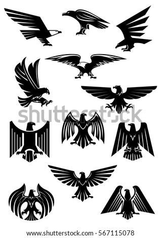 Heraldic eagle, hawk and falcon. Black birds with wide opened wing tattoo, as insignia of power and freedom, patriotism or war symbol. Heraldry or historical culture, military or war theme.