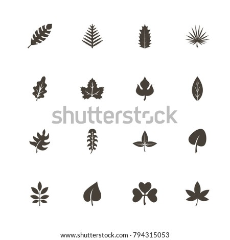 Herb icons. Perfect black pictogram on white background. Flat simple vector icon.