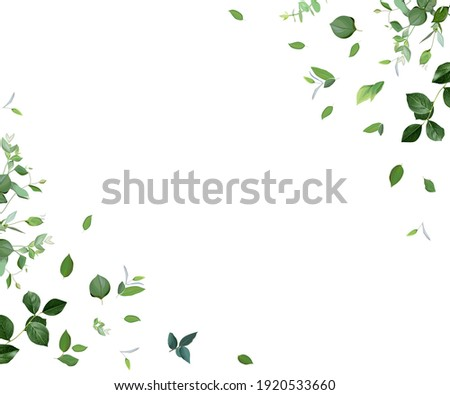 Herbal minimalist vector frame. Hand painted plants, branches, leaves on a white background. Greenery wedding simple invitation template. Watercolor style card. All elements are isolated and editable ストックフォト ©