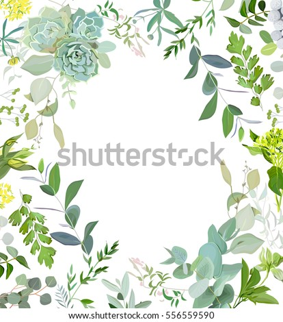 herbal mix square vector frame