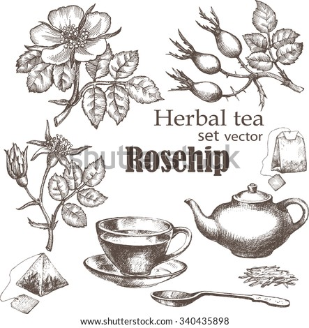 herbal tea  set rose hip tea